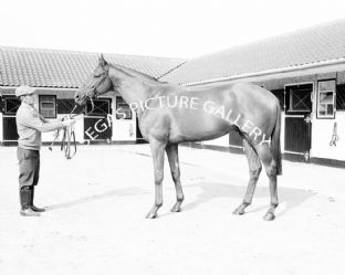 Boucher with Lester Piggott (b632-02)